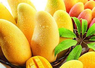 适合银屑病患者的水果有什么